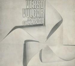 Verso vulgar